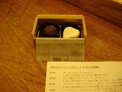 20080123_010035_0.JPG